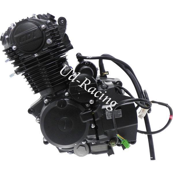 motor zongshen 250 ccm zf169fmm f r dirt bike motor 200cm. Black Bedroom Furniture Sets. Home Design Ideas